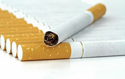 Cigarettes on white background Royalty Free Stock Image