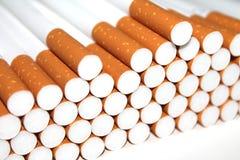 Cigarettrör på vit bakgrund Royaltyfri Fotografi