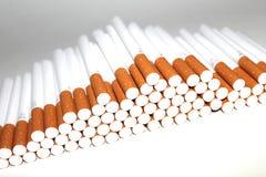 Cigarettrör på vit bakgrund Royaltyfria Bilder