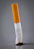 cigarettstump Royaltyfria Bilder