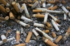 Cigarettstump Arkivbilder