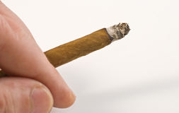 Cigarillo Stock Images