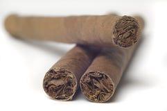 cigarr isolerad white Fotografering för Bildbyråer