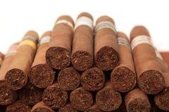 Cigarrer i vit bakgrund Fotografering för Bildbyråer