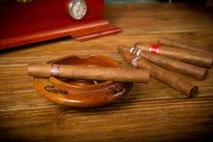 Cigarrer och humidor Arkivfoto