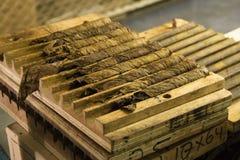 Cigarrer under produktionsprocessen Royaltyfri Bild