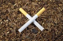 Cigarrillos cruzados Imagen de archivo libre de regalías