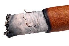 Cigarro. Imágenes de archivo libres de regalías