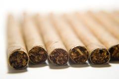 Cigarro Fotografía de archivo libre de regalías