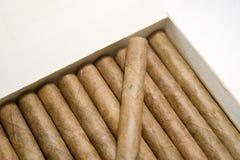 Cigarro Fotografía de archivo