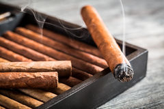 Cigarro ardiente con humo Imagen de archivo libre de regalías