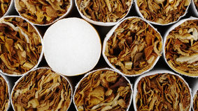 Cigarro com filtro Imagem de Stock