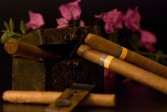 Cigarro cubano Fotos de archivo