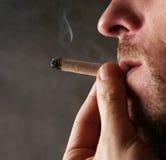 Cigarro de fumo Fotografia de Stock Royalty Free
