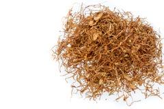 Cigarro de mastigação no fundo branco Imagem de Stock Royalty Free
