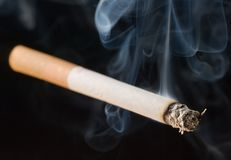 Cigarro no fundo preto foto de stock