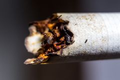Cigarro pago Foto de Stock Royalty Free