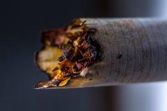 Cigarro pago Fotos de Stock