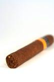 Cigarro vertical Imágenes de archivo libres de regalías