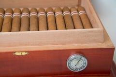 Cigarro y humectador cubanos Imagen de archivo