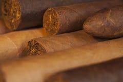 Cigarros Imágenes de archivo libres de regalías