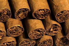 Cigarros Foto de Stock Royalty Free