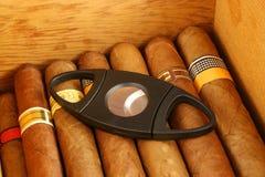 Cigarros con el cortador Foto de archivo libre de regalías