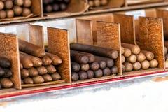 Cigarros cubanos en las cajas en Key West, los E.E.U.U. imagen de archivo libre de regalías