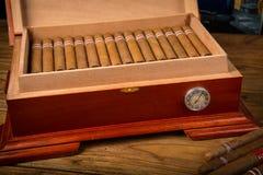 Cigarros y humidor Fotografía de archivo