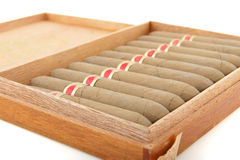 Cigars Stock Photos