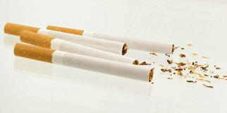 Cigars. Isolated royalty free stock image