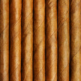 Cigars. In a row close-up, may be used as background Stock Photo