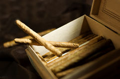 Cigars in box Stock Image