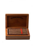 Cigars in a Box royalty free stock images