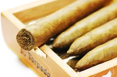 Cigars are in a box. royalty free stock photo