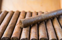 Cigars box Royalty Free Stock Image