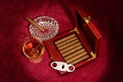Cigars Stock Photos