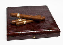 Cigars on the case Royalty Free Stock Photo
