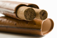 Cigars in case, close-up Stock Image