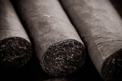 Cigars Close Up Royalty Free Stock Image