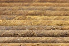 Cigars Stock Image