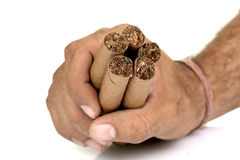 Cigars in hand Royalty Free Stock Images