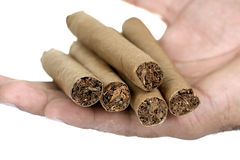 Cigars in hand Royalty Free Stock Image