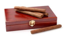 Cigars and humidor. Isolated on white Stock Photo