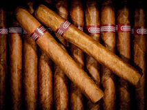 Free Cigars In Humidor Stock Photo - 28495810