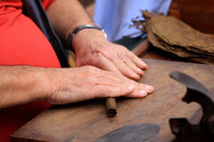 Cigars are made by hand Royalty Free Stock Photo