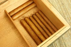 Cigars in open humidor Stock Images