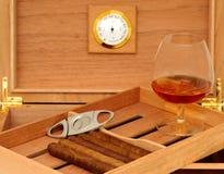 Cigars in open humidor. Cigar cutter. Glass of cognac Stock Photos
