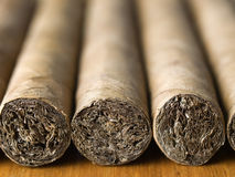 Cigars placed in rows, close-up Royalty Free Stock Photography