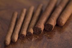 Cigars-on-table. Seven cuban cigars on table Royalty Free Stock Image